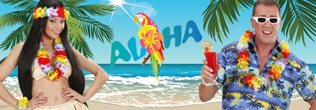 Hawaii Beachparty