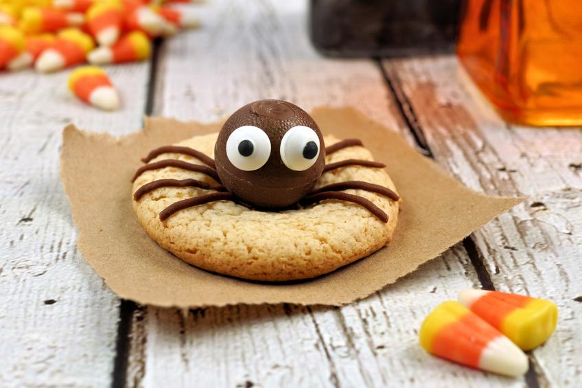 Spinne aus Schokolade