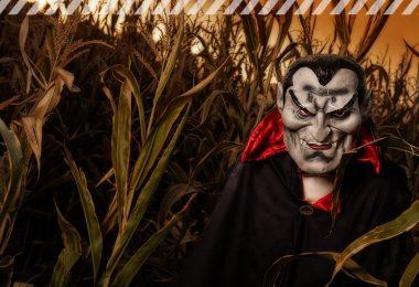 Verkleideter Vampir vor einem Kornfeld, düster