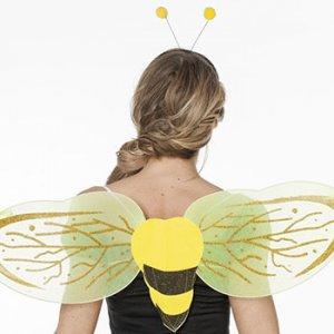 Reiten im Kostüm - Bienenflügel