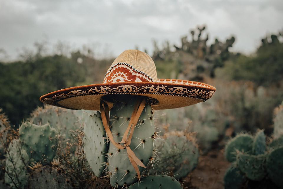Mexikanischer Sombrero auf Kaktus